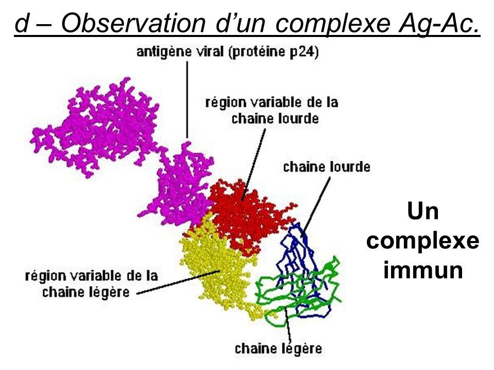 d – Observation dun complexe Ag-Ac. Un complexe immun