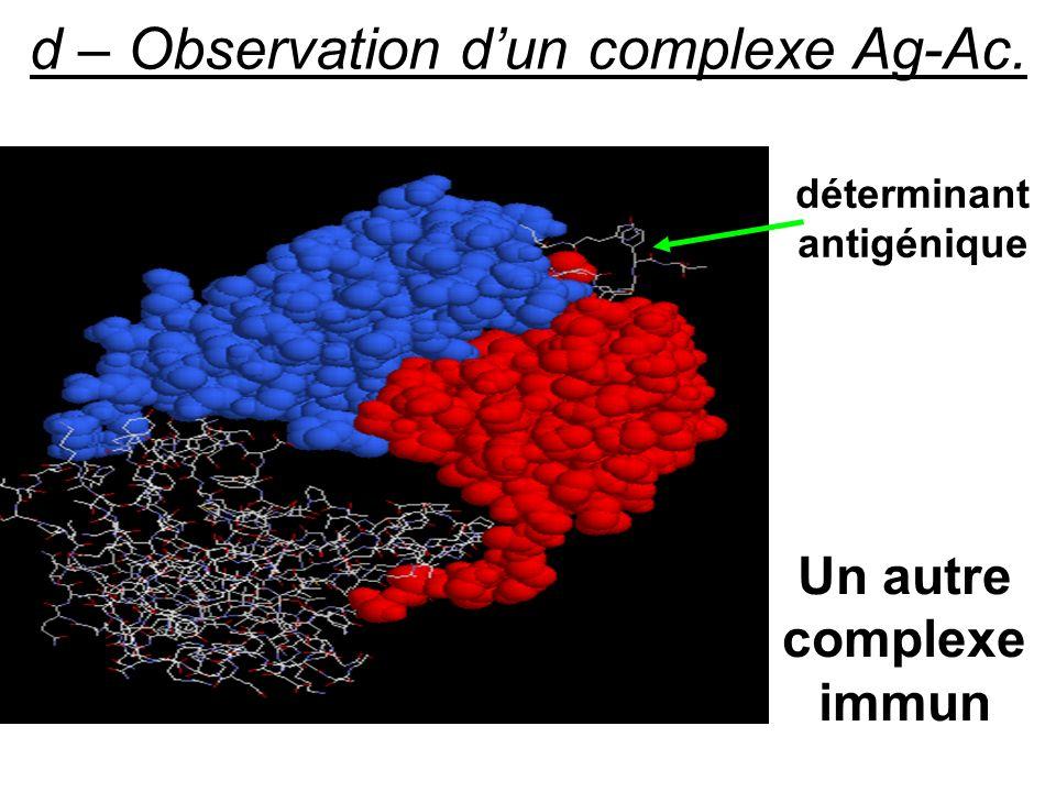 d – Observation dun complexe Ag-Ac. Un autre complexe immun déterminant antigénique