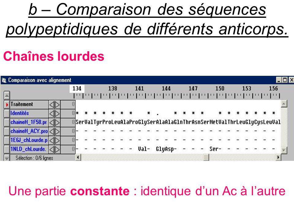 b – Comparaison des séquences polypeptidiques de différents anticorps. Chaînes lourdes Une partie constante : identique dun Ac à lautre