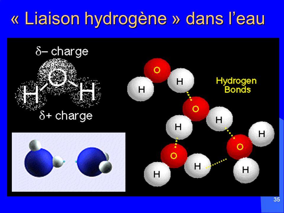 35 « Liaison hydrogène » dans leau