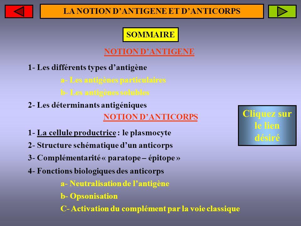LA NOTION DANTIGENE Présents dans lorganisme, ils induisent la production danticorps (Ac) Les antigènes solubles Les antigènes particulaires Il existe deux grands types dantigène (Ag) Retour sommaire