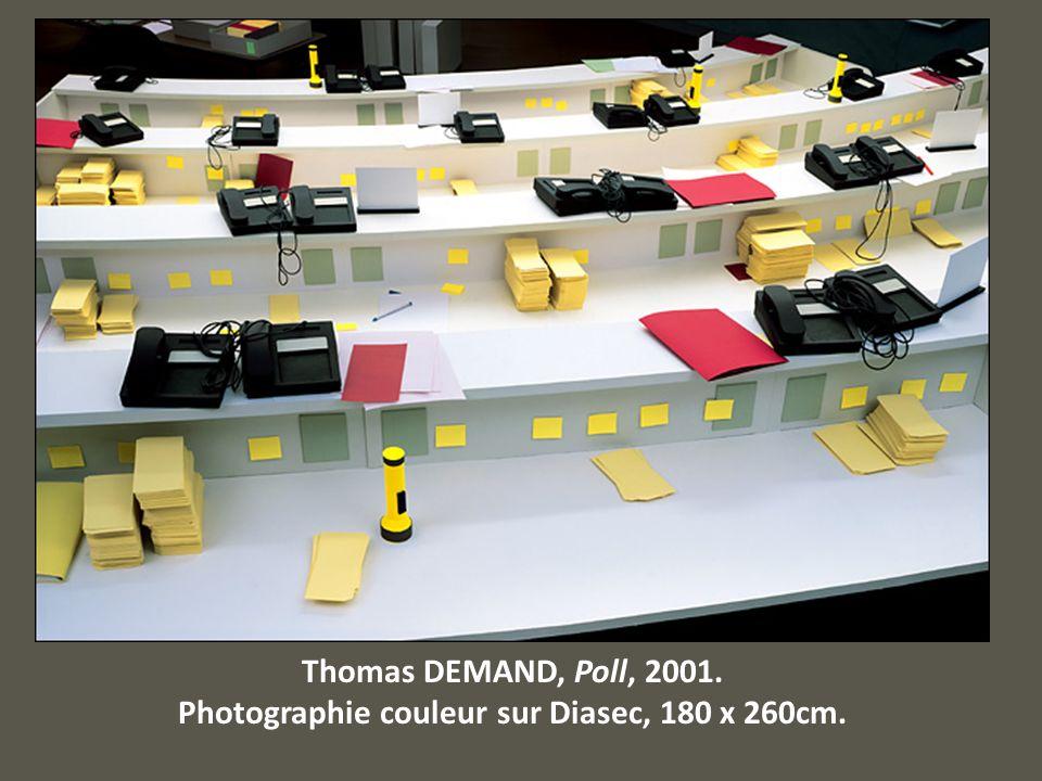 Thomas DEMAND, Poll, 2001. Photographie couleur sur Diasec, 180 x 260cm.