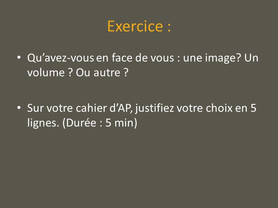 Exercice : Quavez-vous en face de vous : une image? Un volume ? Ou autre ? Sur votre cahier dAP, justifiez votre choix en 5 lignes. (Durée : 5 min)