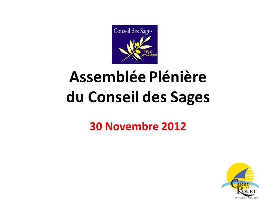 Assemblée Plénière du Conseil des Sages 30 Novembre 2012
