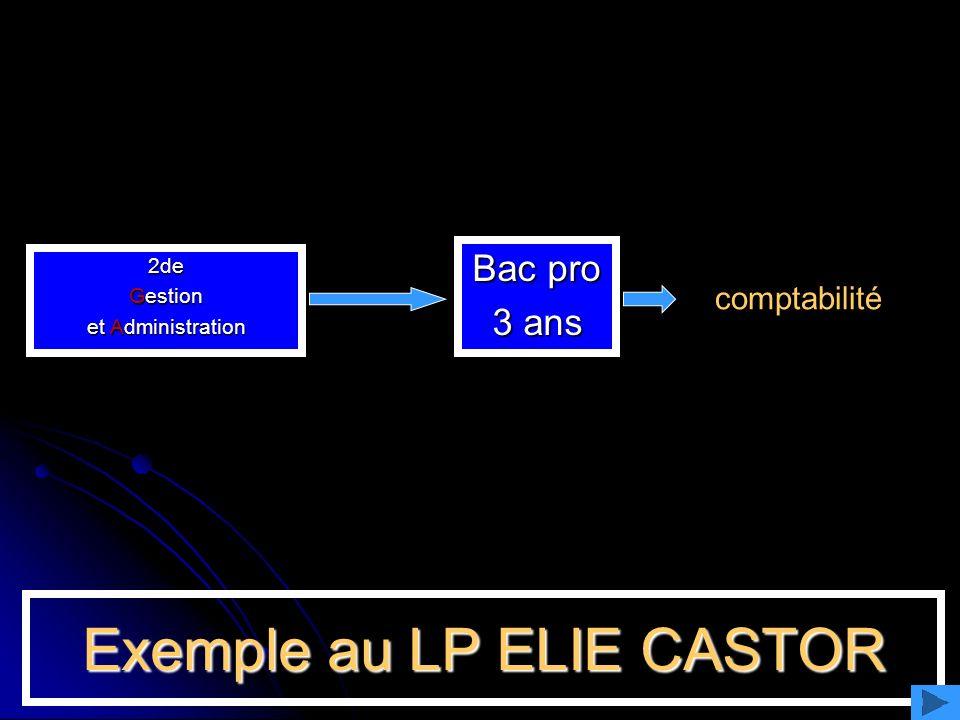 Exemple au LP ELIE CASTOR 2de Gestion et Administration Bac pro 3 ans comptabilité