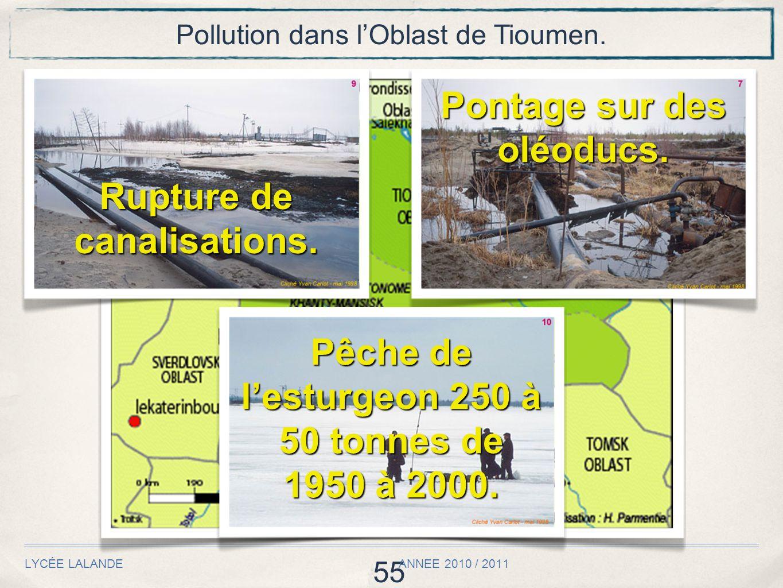 55 LYCÉE LALANDE ANNEE 2010 / 2011 Pollution dans lOblast de Tioumen. Rupture de canalisations. Pontage sur des oléoducs. Pêche de lesturgeon 250 à 50