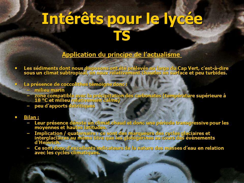 Intérêts pour le lycée TS Application du principe de lactualisme Application du principe de lactualisme Les sédiments dont nous disposons ont été prél