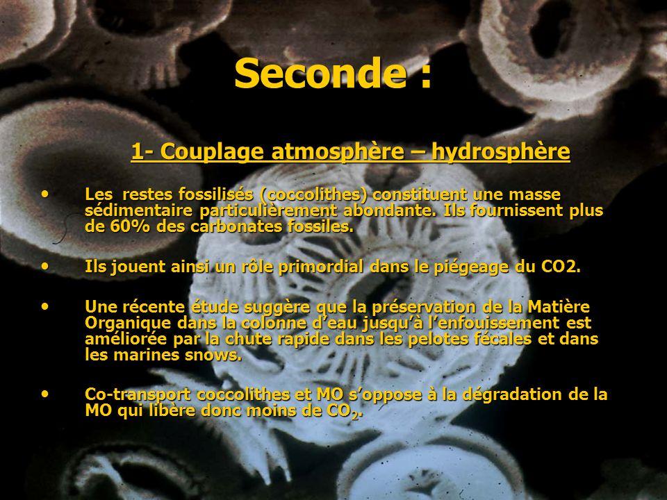 Seconde : 1- Couplage atmosphère – hydrosphère Les restes fossilisés (coccolithes) constituent une masse sédimentaire particulièrement abondante. Ils