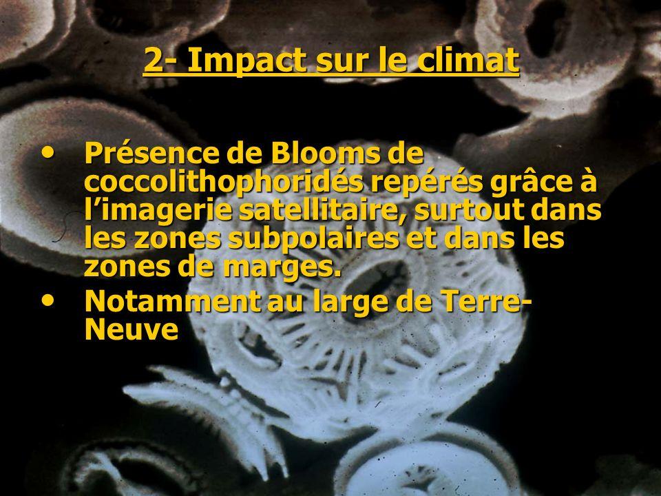 2- Impact sur le climat Présence de Blooms de coccolithophoridés repérés grâce à limagerie satellitaire, surtout dans les zones subpolaires et dans le