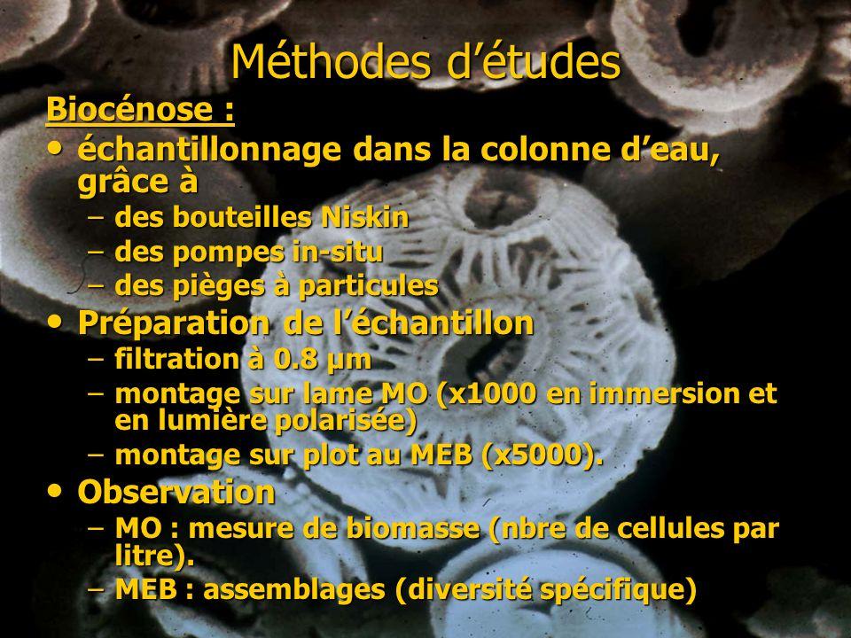 Méthodes détudes Biocénose : échantillonnage dans la colonne deau, grâce à échantillonnage dans la colonne deau, grâce à –des bouteilles Niskin –des p