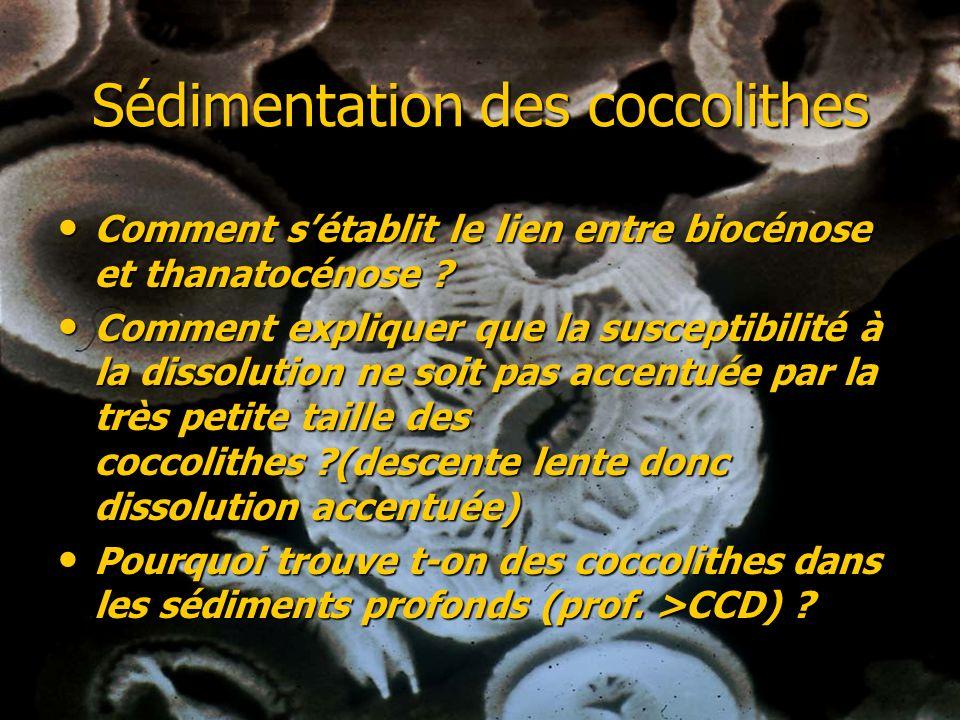 Albédo des nuages Les coccolithophoridés sont les espèces qui produisent le plus de DMS (diméthylsulfure CH3 S CH3) qui est issu de la décomposition des cellules du phytoplancton dans la couche supérieure de locéan et qui séchappe dans latmosphère.