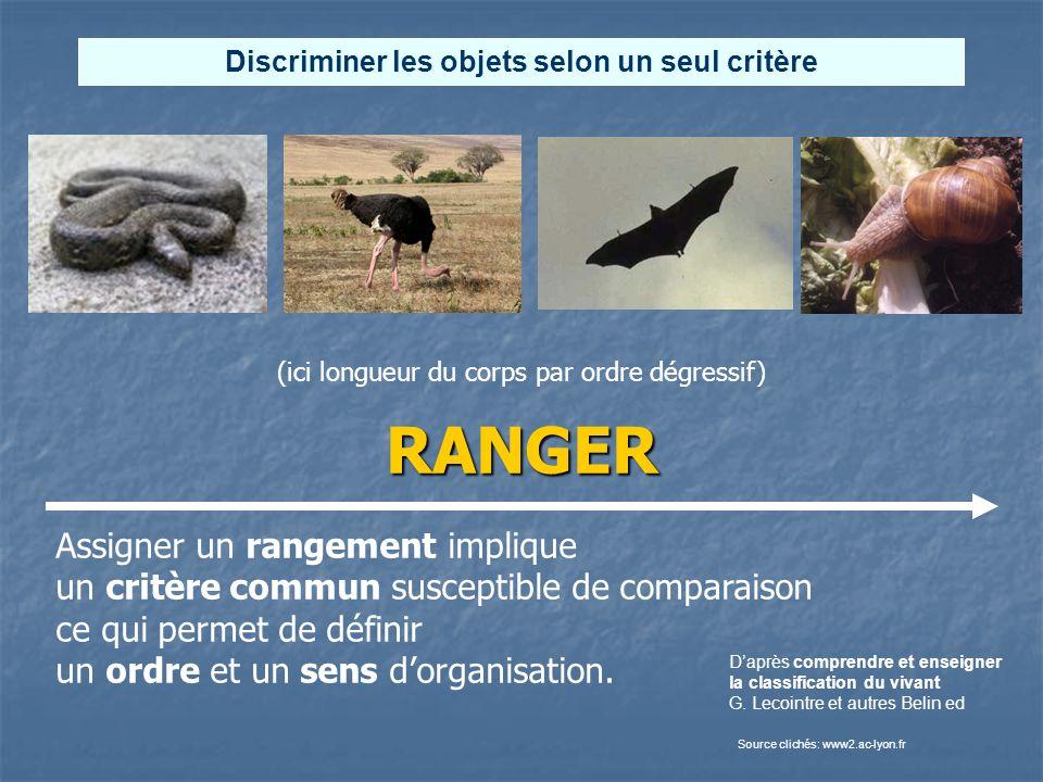 RANGER Daprès comprendre et enseigner la classification du vivant G. Lecointre et autres Belin ed Source clichés: www2.ac-lyon.fr Discriminer les obje