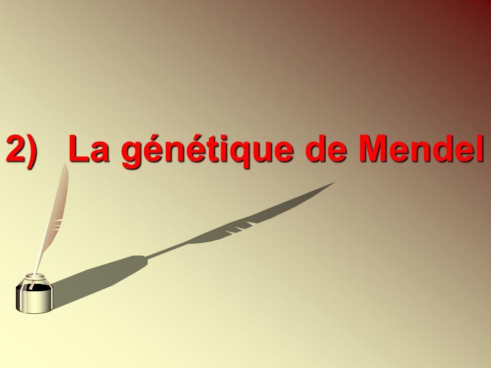 2)La génétique de Mendel