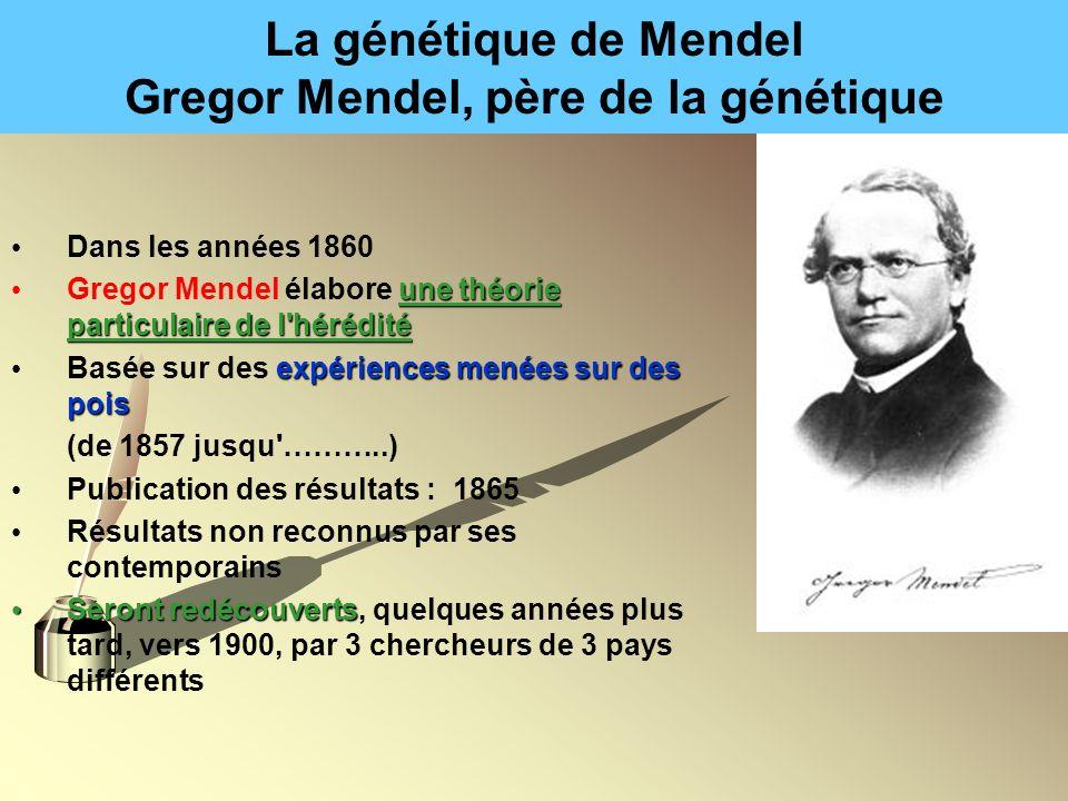 La génétique de Mendel Gregor Mendel, père de la génétique Dans les années 1860 une théorie particulaire de l'hérédité Gregor Mendel élabore une théor