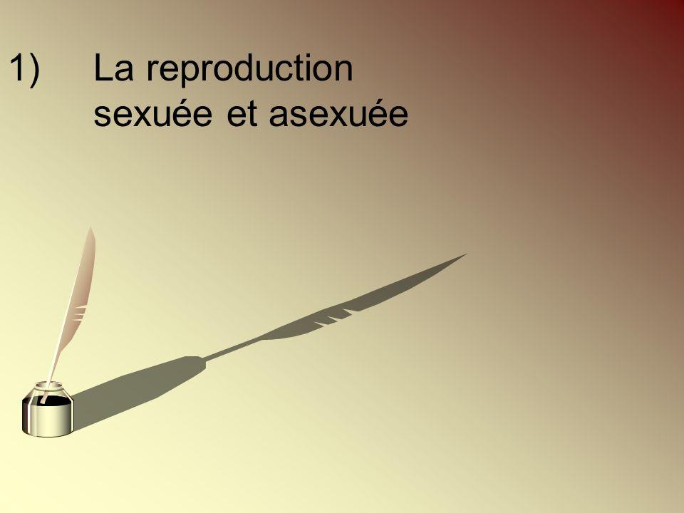 1)La reproduction sexuée et asexuée