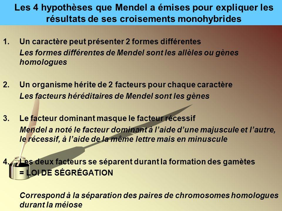 Les 4 hypothèses que Mendel a émises pour expliquer les résultats de ses croisements monohybrides 1.Un caractère peut présenter 2 formes différentes L