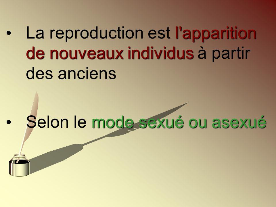l'apparition de nouveaux individus La reproduction est l'apparition de nouveaux individus à partir des anciens mode sexué ou asexué Selon le mode sexu