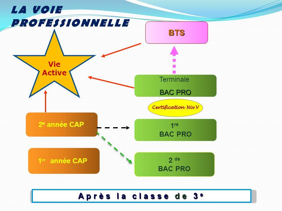Après la classe de 3 e 2 de BAC PRO 1 re année CAP 1 re BAC PRO Terminale BAC PRO BTS 2 e année CAP LA VOIE PROFESSIONNELLE Vie Active