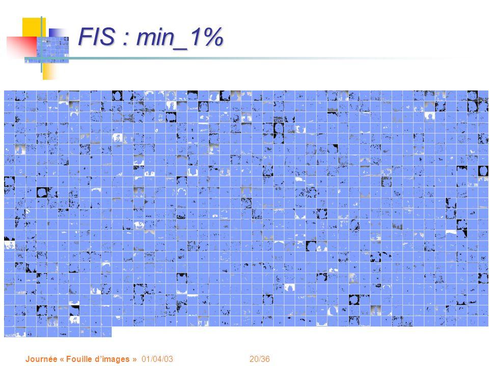 20/36 Journée « Fouille dimages » 01/04/03 FIS : min_1%