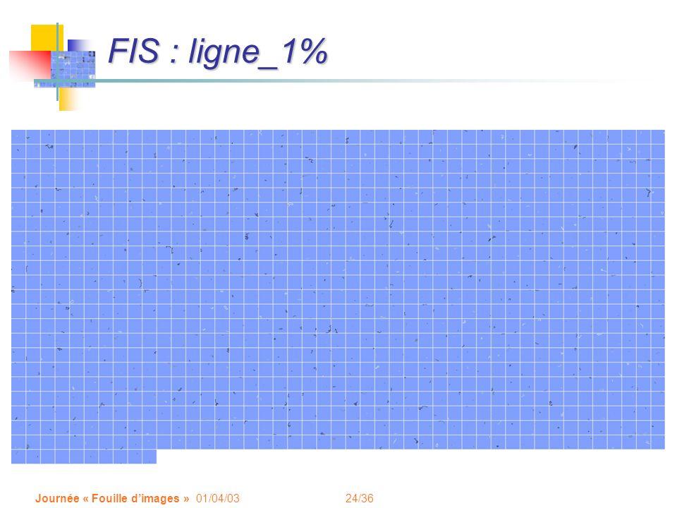 24/36 Journée « Fouille dimages » 01/04/03 FIS : ligne_1%