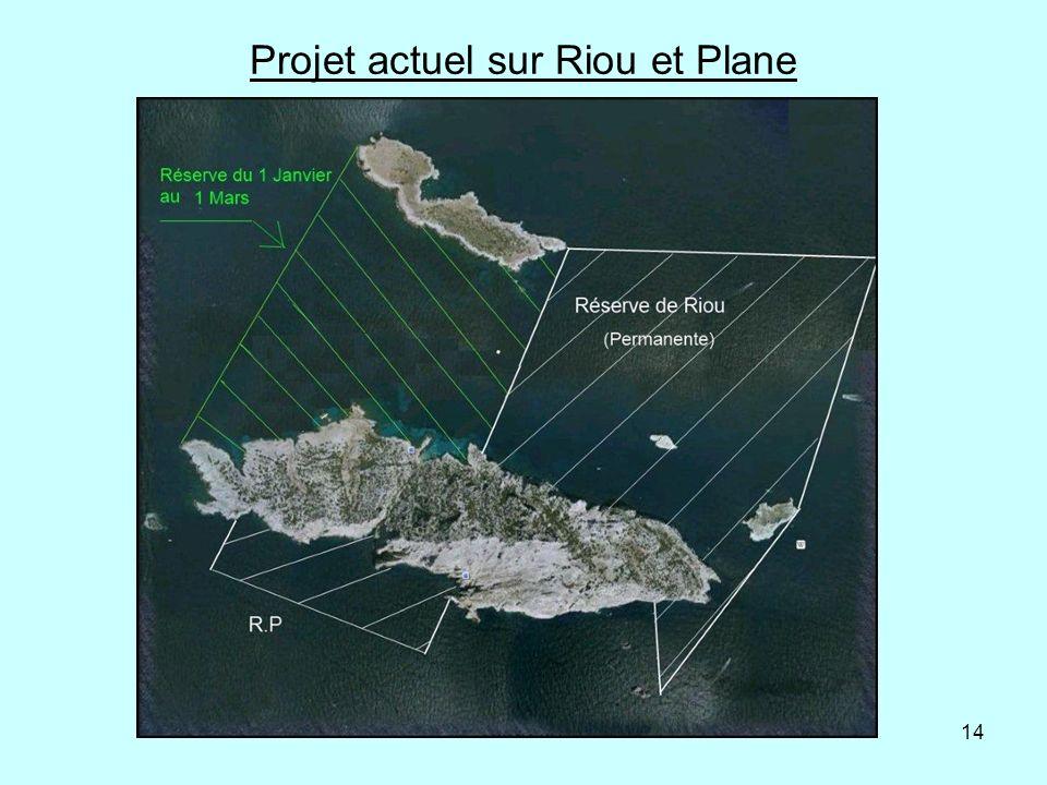 14 Projet actuel sur Riou et Plane