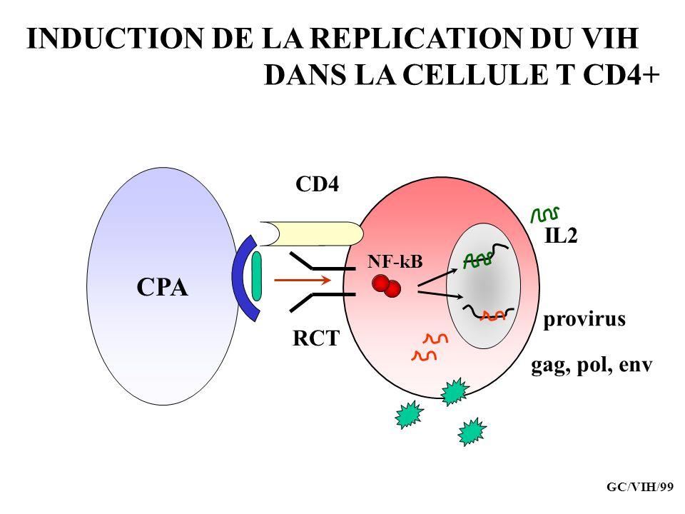 INDUCTION DE LA REPLICATION DU VIH DANS LA CELLULE T CD4+ CPA CD4 RCT NF-kB IL2 provirus gag, pol, env GC/VIH/99