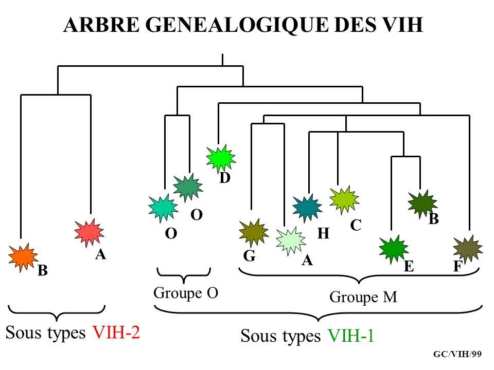 ATTEINTES CUTANEES Herpes Zona Molluscum contagiosum Papillomavirus verrues, condylomes, végétations vénériennes Mycoses, infections bactériennes Dermite séborrhéique GC/VIH/99