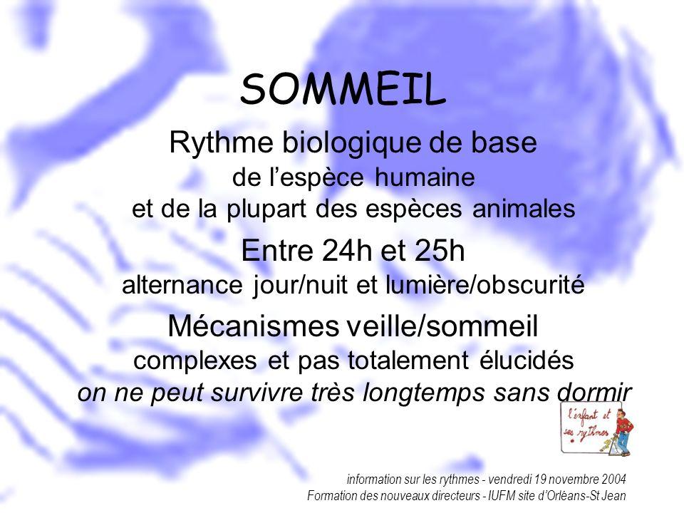 information sur les rythmes - vendredi 19 novembre 2004 Formation des nouveaux directeurs - IUFM site dOrléans-St Jean SOMMEIL Rythme biologique de ba