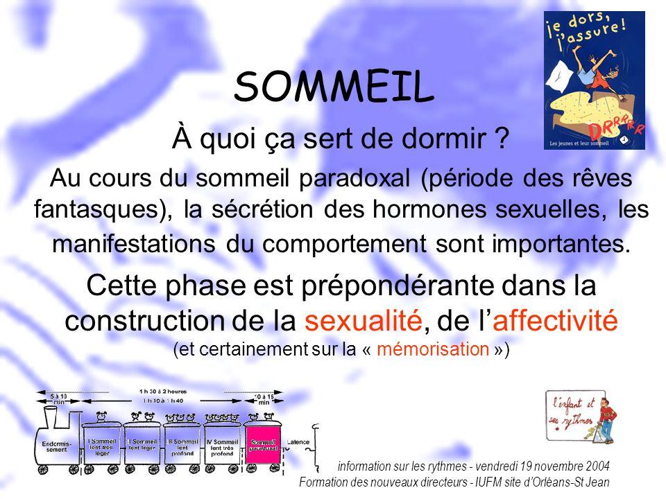 information sur les rythmes - vendredi 19 novembre 2004 Formation des nouveaux directeurs - IUFM site dOrléans-St Jean SOMMEIL À quoi ça sert de dormi