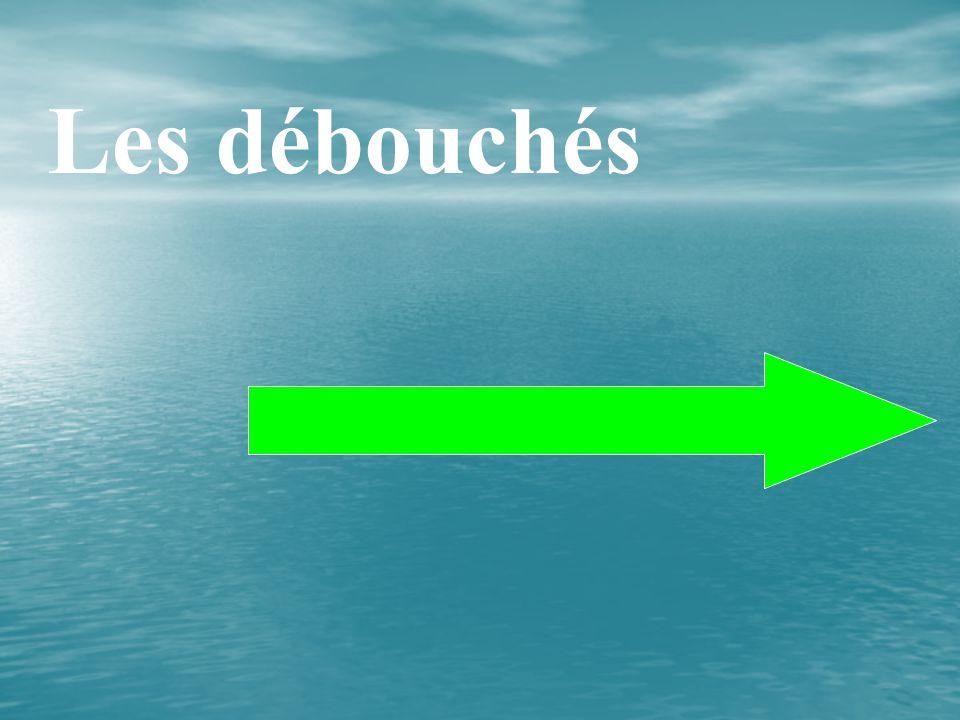 LENSEIGNEM ENT : Les enseignements généraux comprennent : B T S H P E 1 ère année2 ème année 1 h Les Mathématiques Les Sciences Physiques Les Langues vivantes 2 h 3 h Le Français 2 h f(x) = 3x + 5 f(2) = 3.
