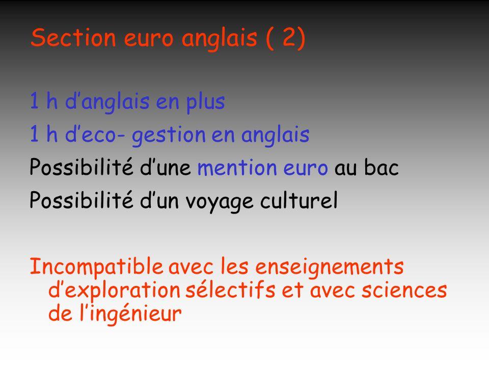 Section euro anglais ( 2) 1 h danglais en plus 1 h deco- gestion en anglais Possibilité dune mention euro au bac Possibilité dun voyage culturel Incom