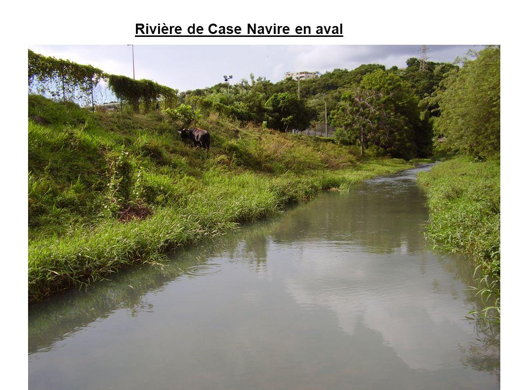 Rivière de Case Navire en aval