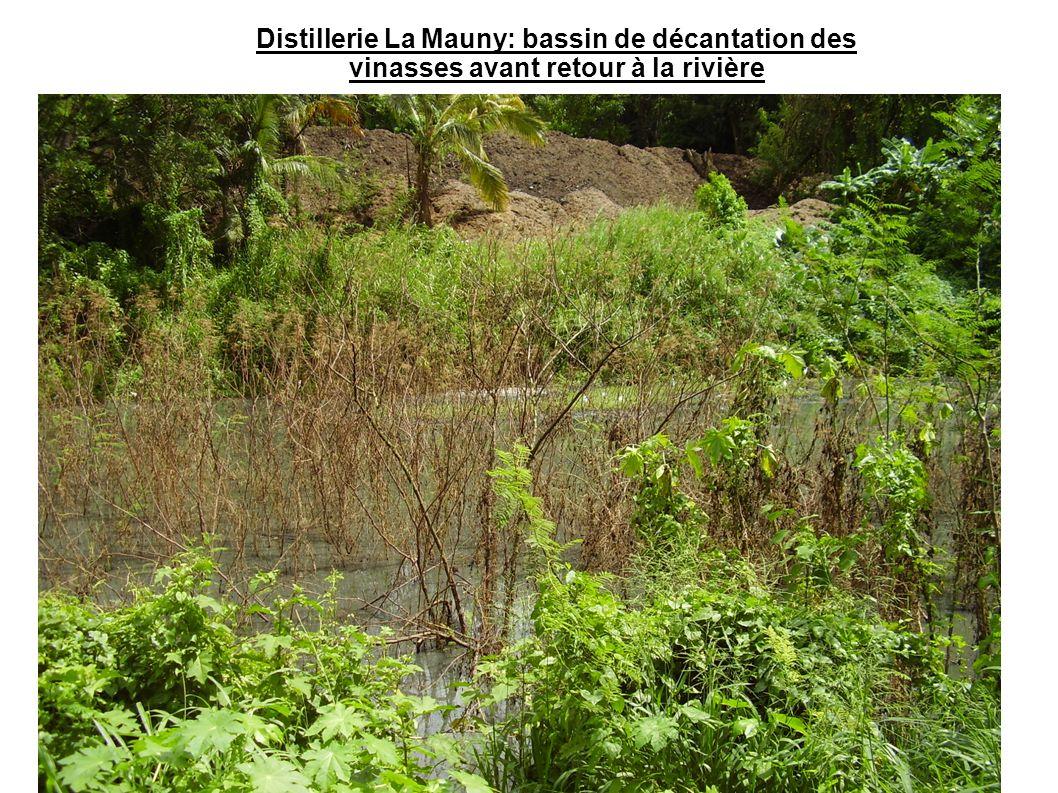 Station d épuration de Fond- Lahaye: bassin de décantation