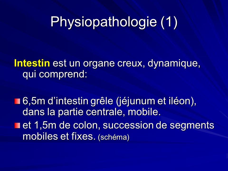 Physiopathologie (1) Intestin est un organe creux, dynamique, qui comprend: 6,5m dintestin grêle (jéjunum et iléon), dans la partie centrale, mobile.