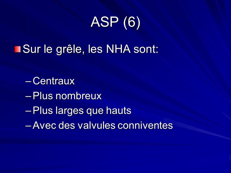 ASP (6) Sur le grêle, les NHA sont: –Centraux –Plus nombreux –Plus larges que hauts –Avec des valvules conniventes