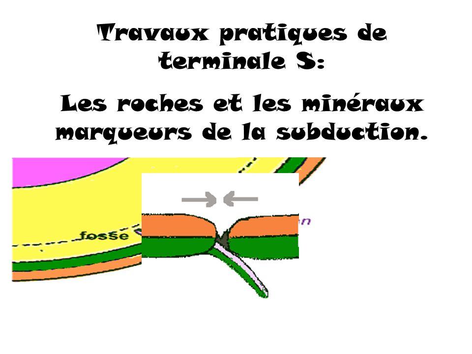 Travaux pratiques de terminale S: Les roches et les minéraux marqueurs de la subduction.