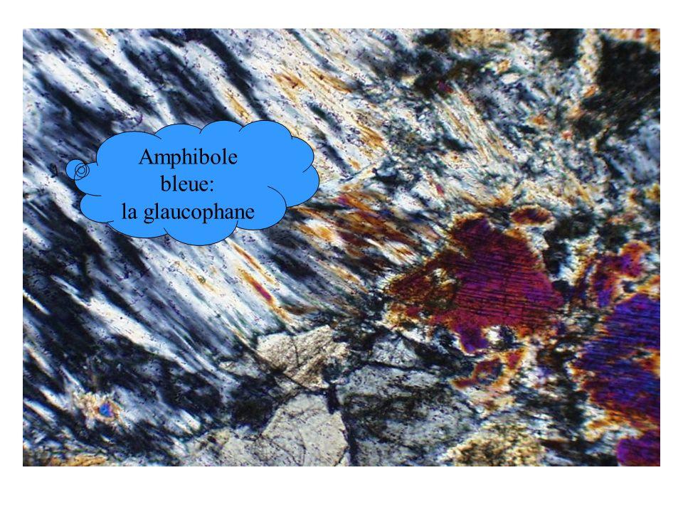 Amphibole bleue: la glaucophane