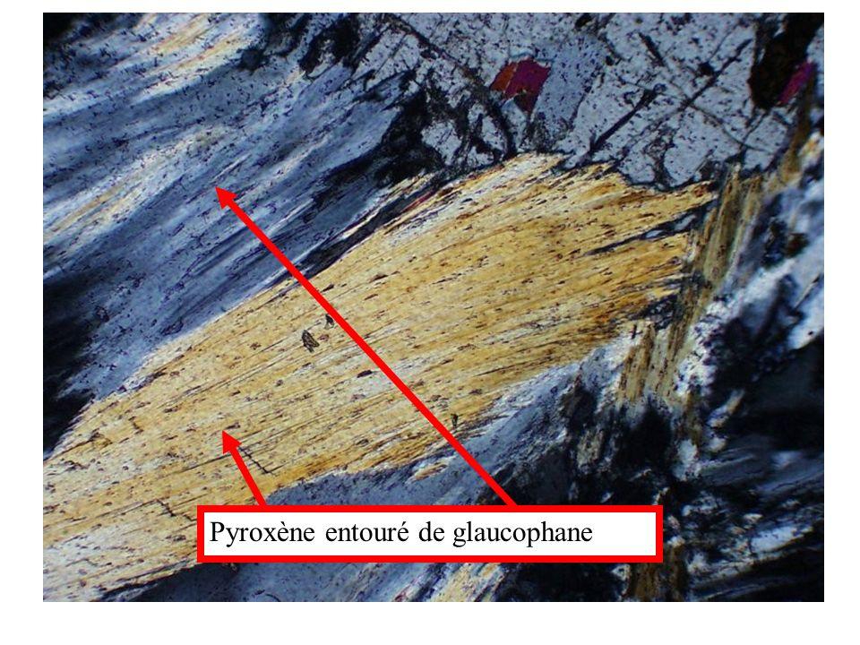 Pyroxène entouré de glaucophane