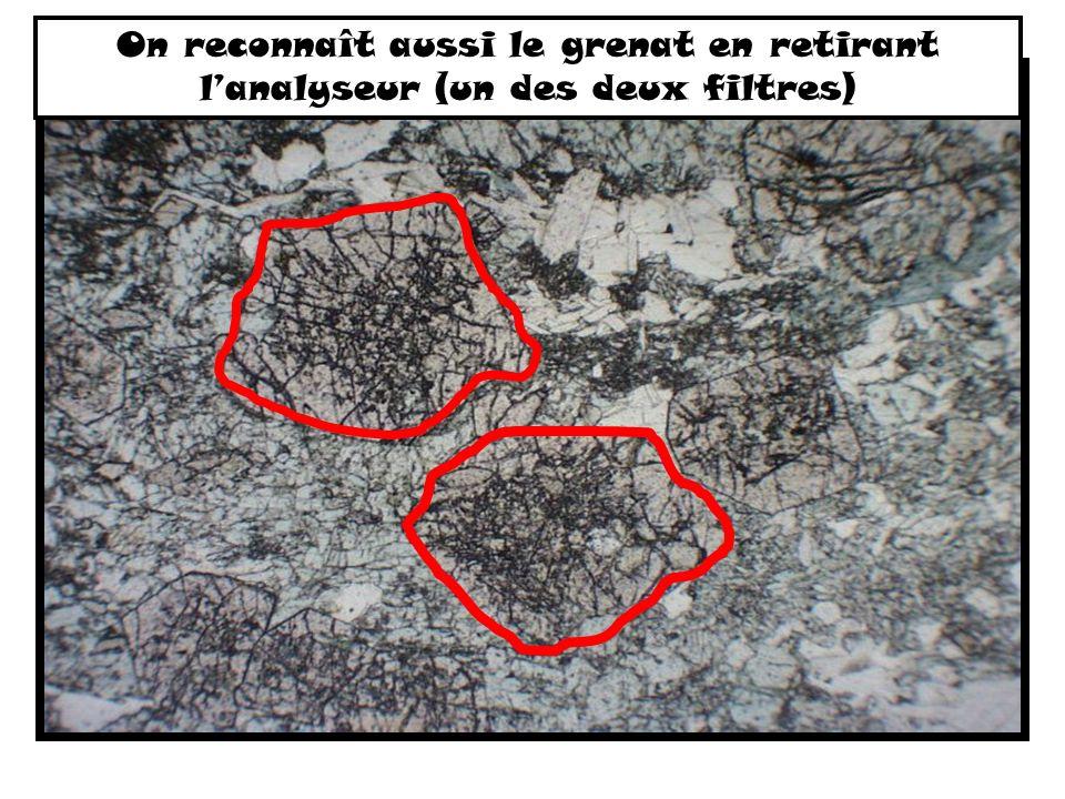 On reconnaît aussi le grenat en retirant lanalyseur (un des deux filtres)