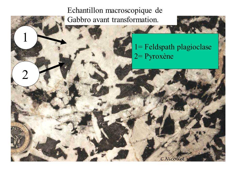 Echantillon macroscopique de Gabbro avant transformation. 1 2 1= Feldspath plagioclase 2= Pyroxène