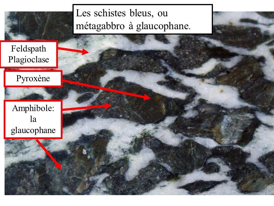 Les schistes bleus, ou métagabbro à glaucophane. Feldspath Plagioclase Pyroxène Amphibole: la glaucophane