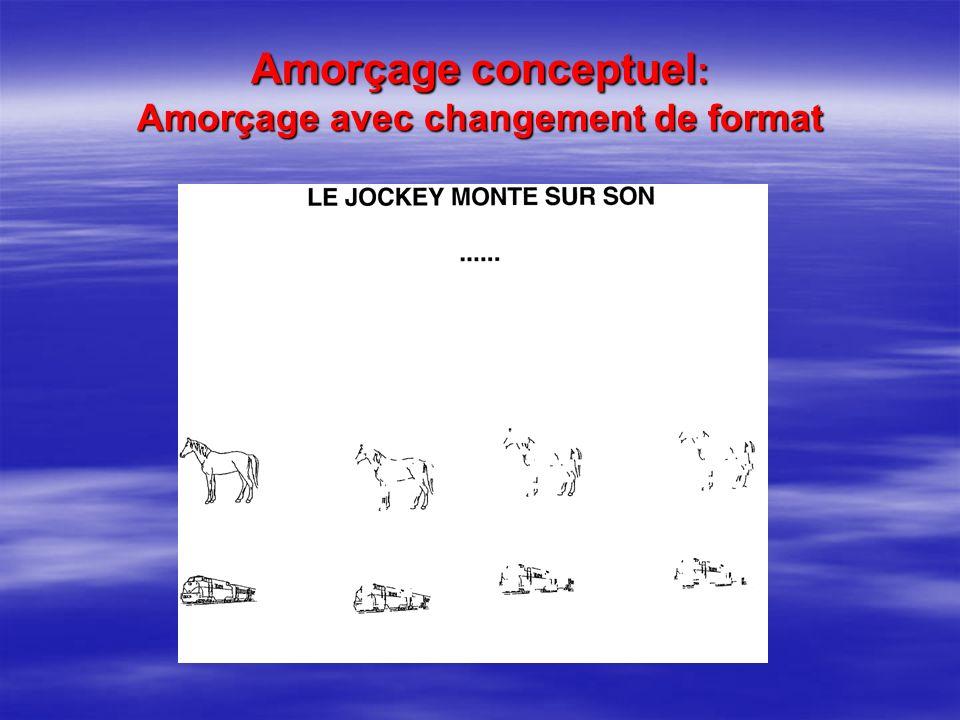 Amorçage conceptuel : Amorçage avec changement de format
