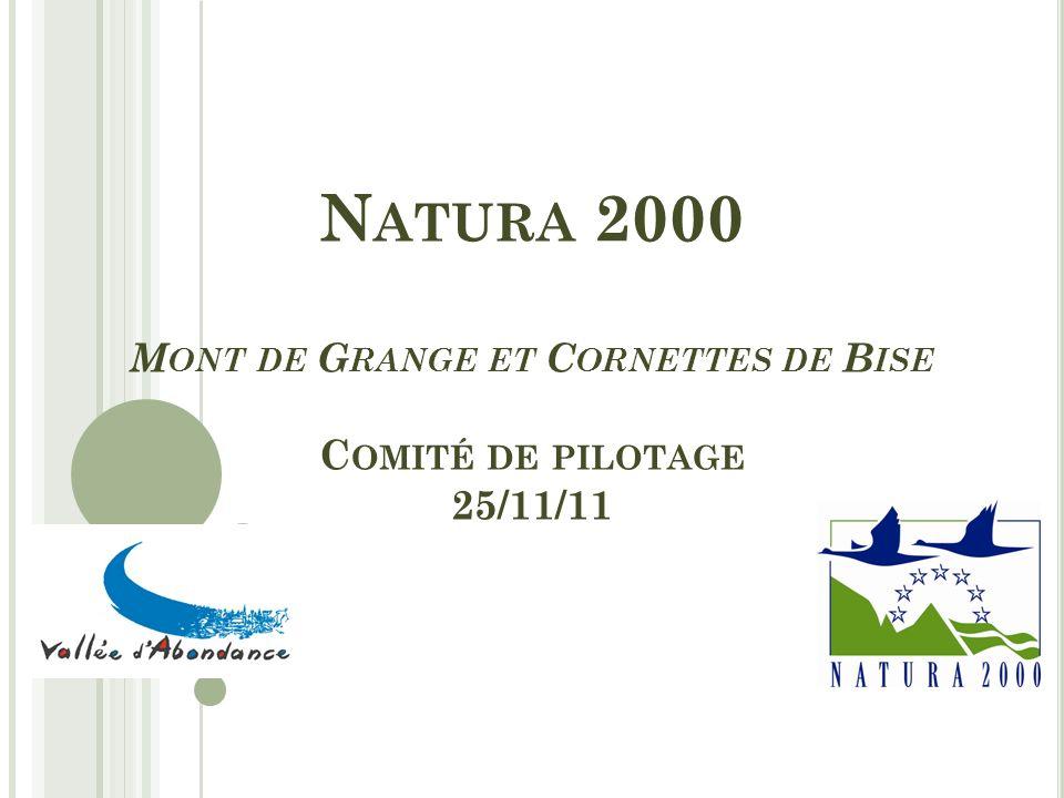 N ATURA 2000 M ONT DE G RANGE ET C ORNETTES DE B ISE C OMITÉ DE PILOTAGE 25/11/11
