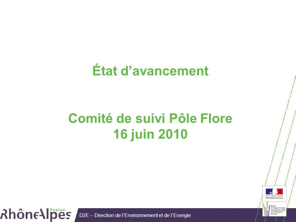 D2E – Direction de lEnvironnement et de lEnergie État davancement Comité de suivi Pôle Flore 16 juin 2010