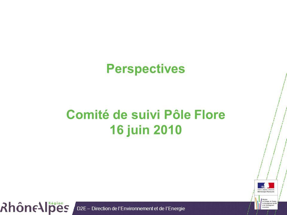 D2E – Direction de lEnvironnement et de lEnergie Perspectives Comité de suivi Pôle Flore 16 juin 2010
