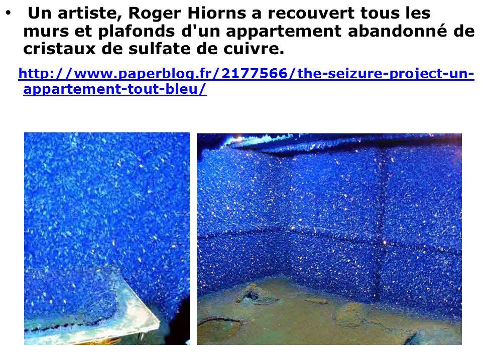 Un artiste, Roger Hiorns a recouvert tous les murs et plafonds d'un appartement abandonné de cristaux de sulfate de cuivre. http://www.paperblog.fr/21