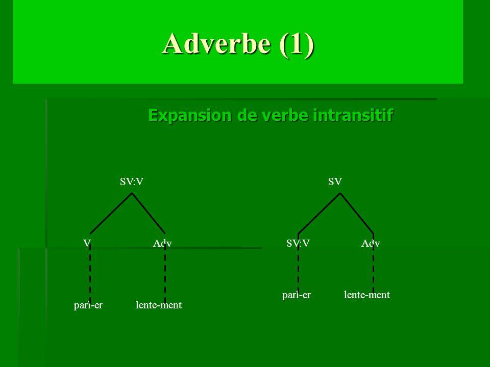 Adverbe (1) Expansion de verbe intransitif SV:V VAdv parl-er lente-ment SV SV:VAdv parl-er lente-ment