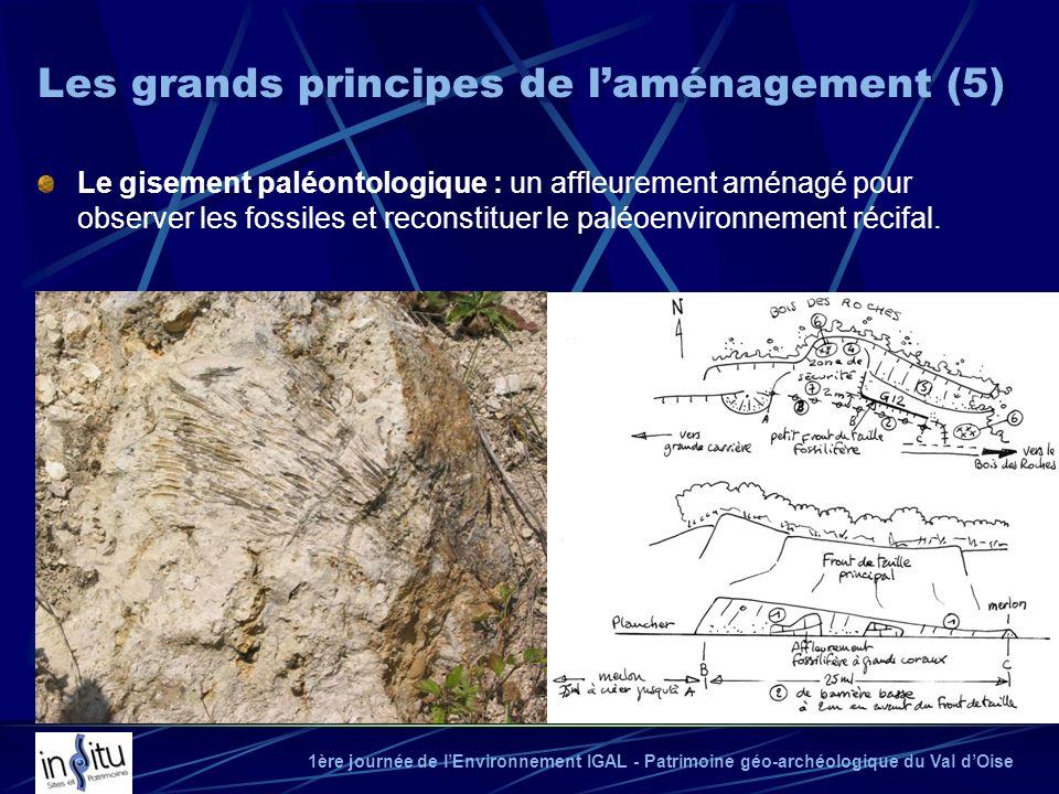 1ère journée de lEnvironnement IGAL - Patrimoine géo-archéologique du Val dOise Le gisement paléontologique : un affleurement aménagé pour observer le
