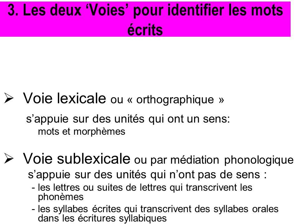 Voie lexicale ou « orthographique » sappuie sur des unités qui ont un sens: mots et morphèmes Voie sublexicale ou par médiation phonologique sappuie s
