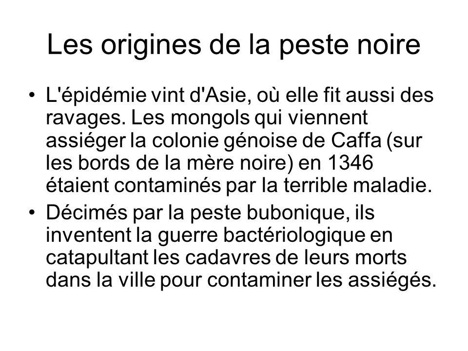 Les origines de la peste noire L'épidémie vint d'Asie, où elle fit aussi des ravages. Les mongols qui viennent assiéger la colonie génoise de Caffa (s